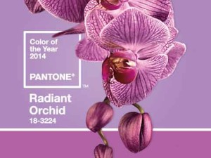 pantone 2014 - imprimerie montreal