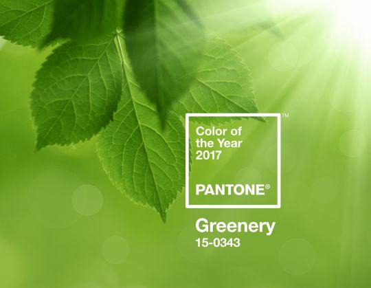 Pantone Greenery, couleur 2017, imprimerie