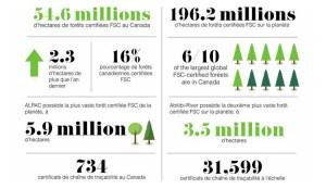 forêts FSC - tableau statistique